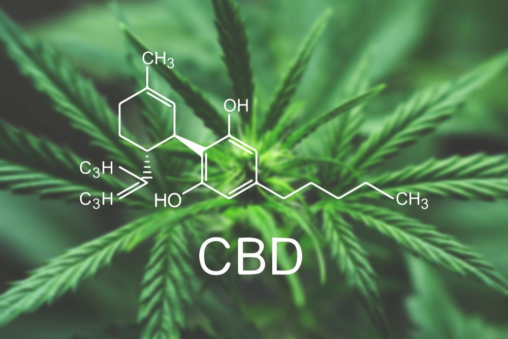 CBD a jeho účinné preparáty